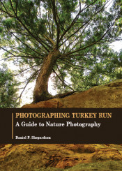Photographing Turkey Run: A Guide to Nature Photography